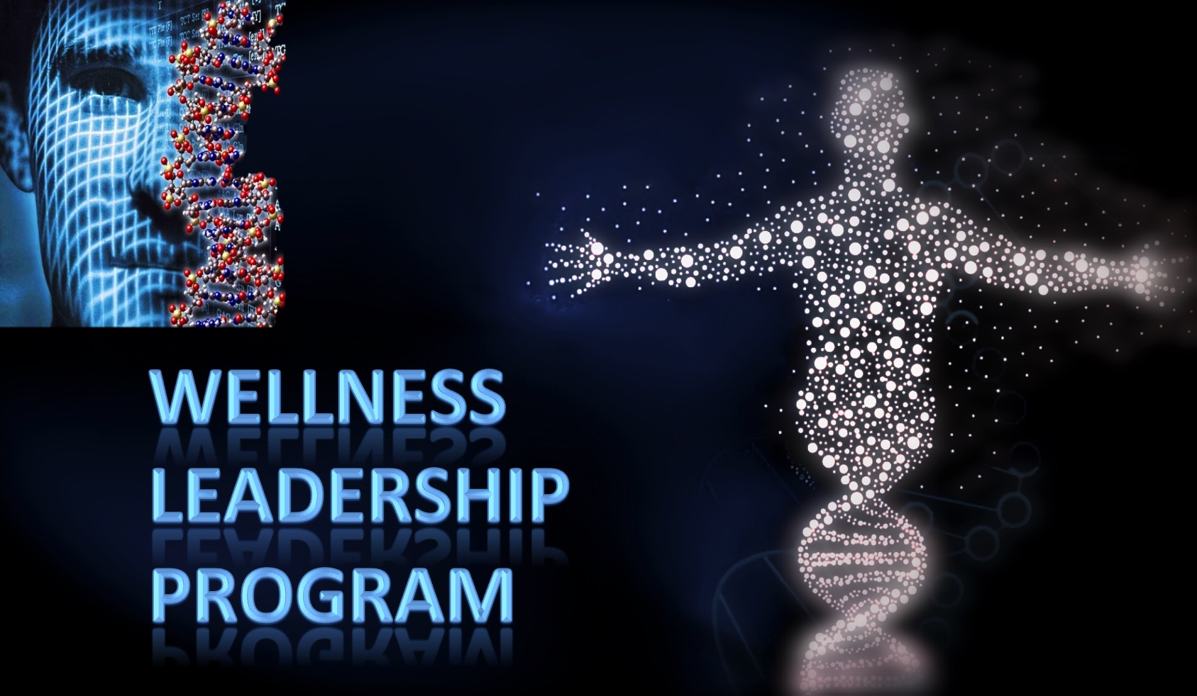 wellness leadership program